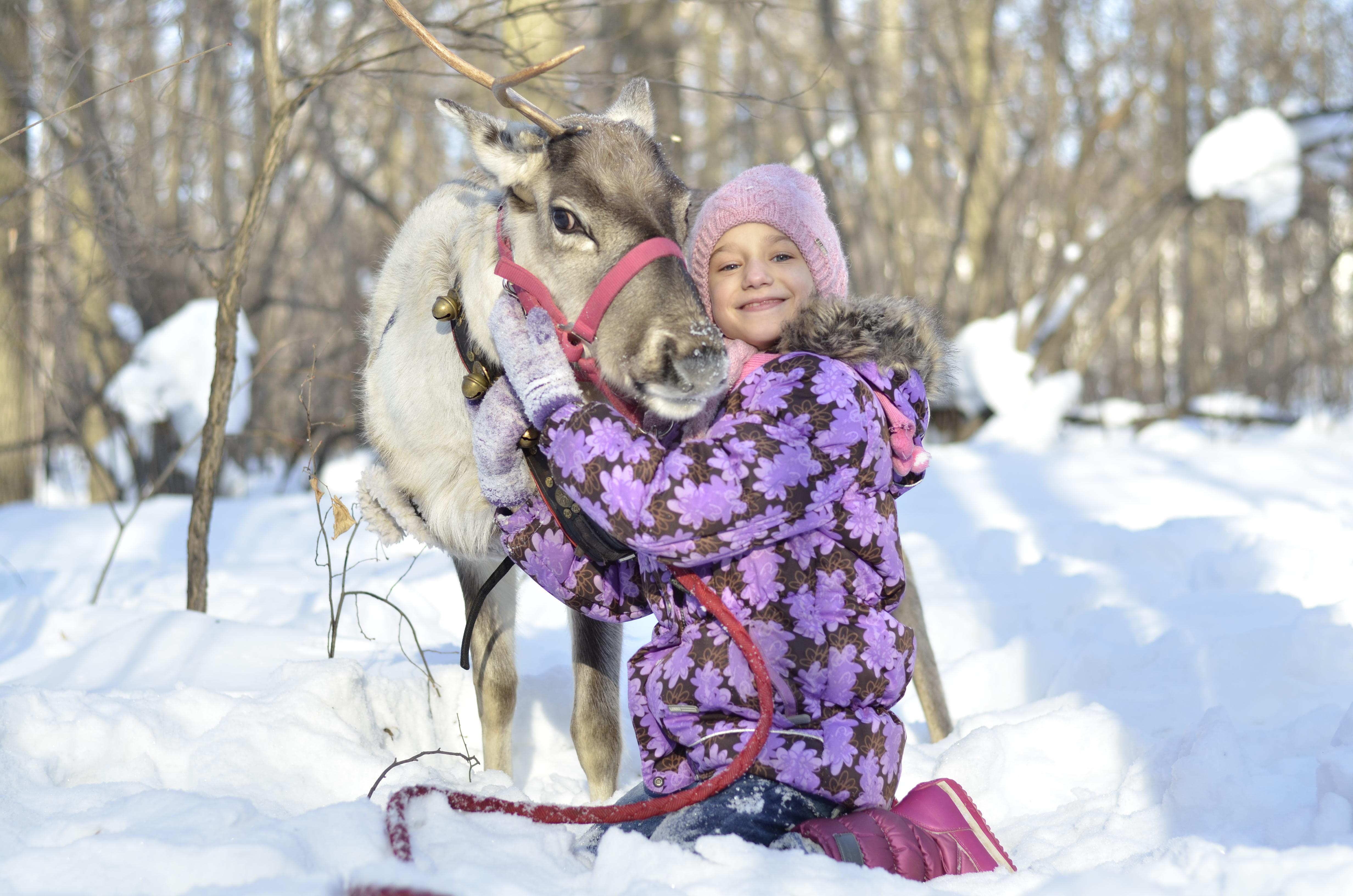 конкурс фотографий зимние каникулы по-мюнхенски как