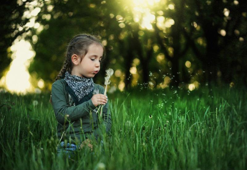 Девочка дует на одуванчик