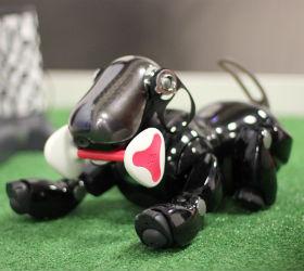 Собачка-робот