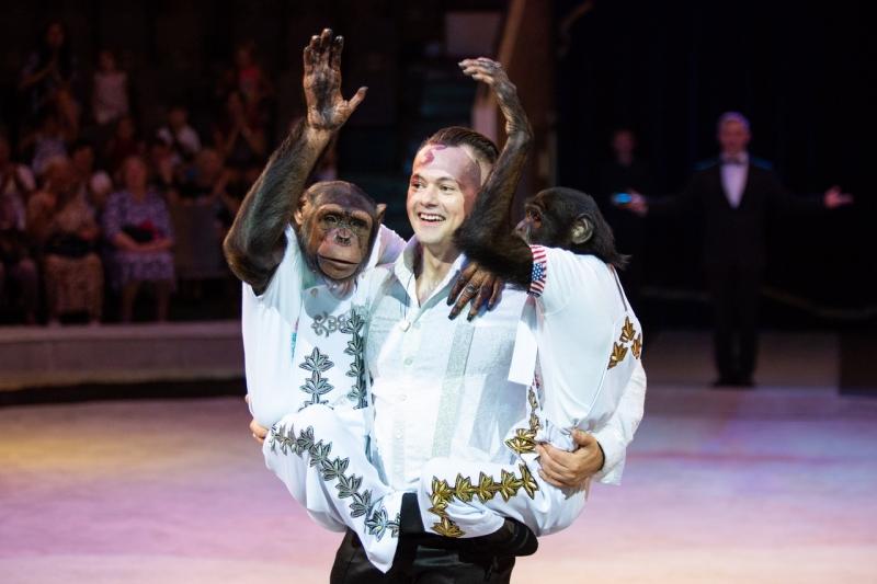 Запашный Дан с обезьянами