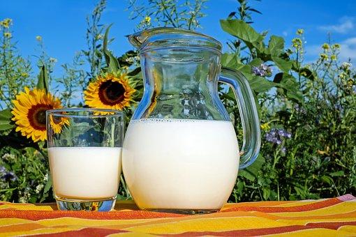 День молока