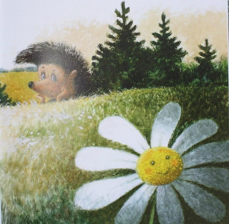 Ежик и медвежонок картинки ромашки