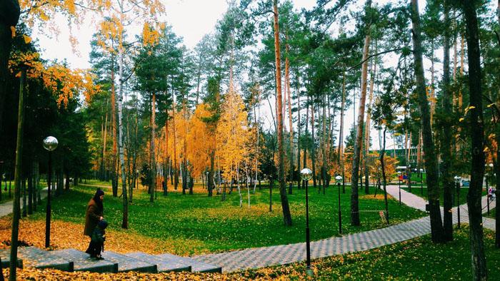 лес циолковский
