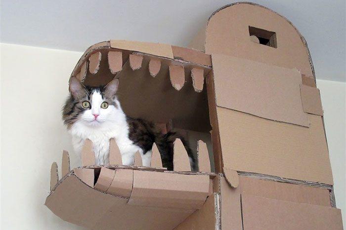 кот в замке