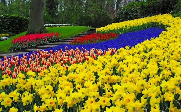 Московский Международный Фестиваль Садов и Цветов