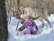 София и Снежинка в лесу