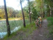 Велопрогулка по лесу)