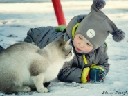Первый снег и новый друг